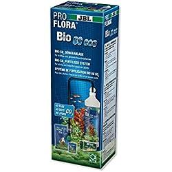 JBL ProFlora Bio80 eco 2 64449 Bio CO2-Düngeanlage, Für Aquarien von 12-80 l