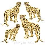 DesignStix Cheetah Akzente schälen und Stick Décor