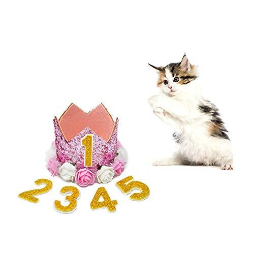 ZYZ Krone Haustier Geburtstag Hut Wiederverwendbare Katze Hund Kopfbedeckungen Caps entzückende Welpen Kätzchen Blume Geburtstag Kopfschmuck Haustier Geburtstag Kostüm (Party Bei Der Darstellung Und Kostüm)