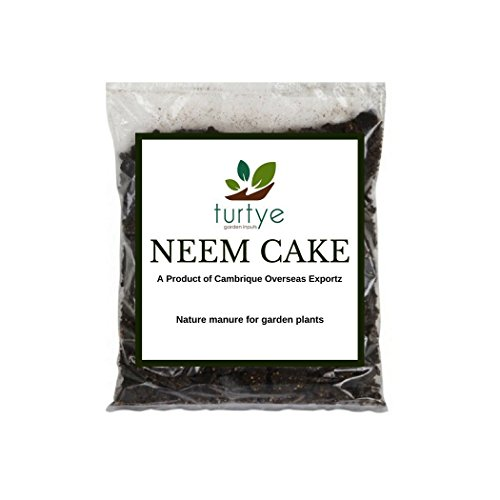 TURTYE® Organic Neem Cake for Gardening - 900 Grams - For Home Gardening Plants  available at amazon for Rs.199