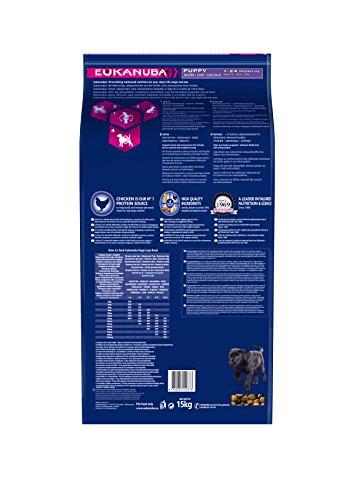 Eukanuba Puppy Large Breed Trockenfutter (für Welpen großer Hunderassen, Premiumnahrung mit Huhn), 15 kg Beutel - 2