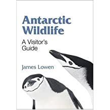 [Antarctic Wildlife: A Visitor's Guide] (By: James Lowen) [published: May, 2011]