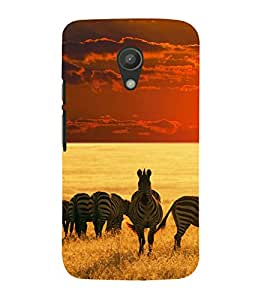 printtech Nature Animal Zebra Back Case Cover for Motorola Moto G2 X1068 / Motorola Moto G (2nd Gen)