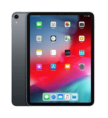 "Apple iPad Pro 11"" Display Wi-Fi 256GB - Space Grau"