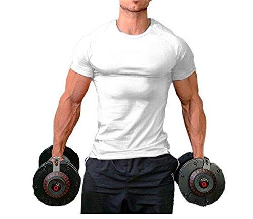 T-shirt pour homme Hippolo pour le fitness, 100% coton, à manches courtes