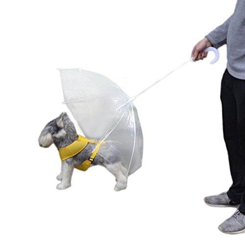 hunpta transparente PET paraguas pequeño perro paraguas lluvia Gear con correas para perros mascota mantiene seco cómoda en lluvia nieve