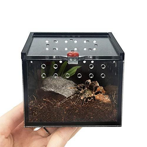 dewdropy Fütterungsbox Für Spider Lizard Cricket Turtle Haustierzucht Keeper Palace Black Acryl 8.5x8.5x6.5cm