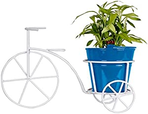 Trustbasket Metal Bicycle with Bucket Planter and Lucky Bamboo Plant (Blue)