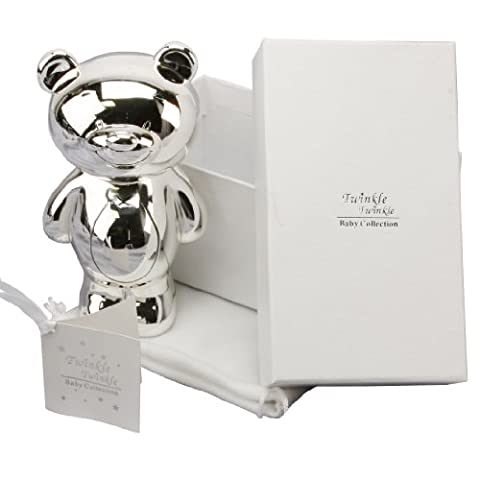 Personalised Silver Plated Teddy Money Box Gift For Christening/Baptism (CG300C)