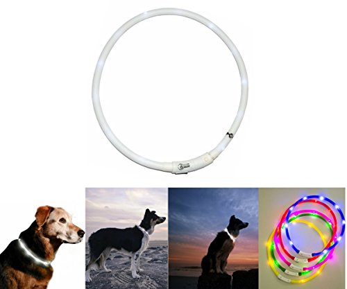 Case Wonder LED Leuchthalsband Hunde Halsband - USB Wiederaufladbar - Längenverstellbarer Haustier Sicherheit Kragen / Blinkende Kragen Deluxe für Hunde und Katzen- 3 Lights Mode & 8 Farben (Weiß) -