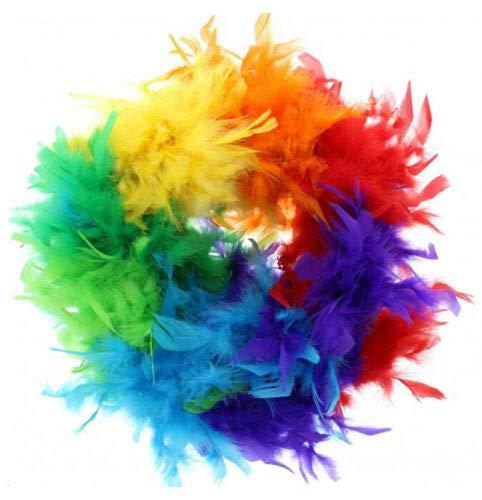 Regenbogen CSD Pride LGBT Rainbow KOSTÜM Zubehör Armband SCHMUCK FLAGGEN HAARBÄNDER HOSENTRÄGER - vertrieb durch ABAV (1x Feder Boas Regenbogen ZPFB002) ()
