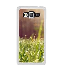 Fuson Designer Back Case Cover for Samsung Galaxy Grand Prime :: Samsung Galaxy Grand Prime Duos :: Samsung Galaxy Grand Prime G530F G530Fz G530Y G530H G530Fz/Ds (Grass Dew Drops Sunshine Morning greenery)