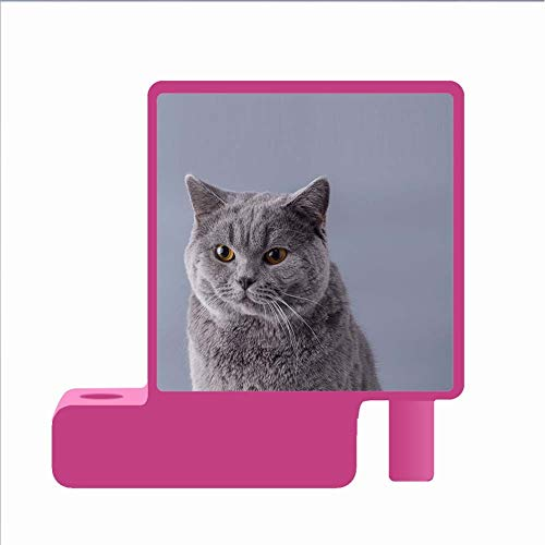 Verwenden Sie Auf Red Pen Container Girl Klar Drucken Mit Shorthair Cat Hartplastik