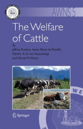 The Welfare of Cattle (Animal Welfare)