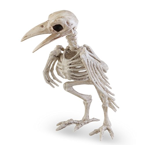 (Tinksky Tier Skeleton Knochen Horror Halloween Dekoration Halloween Prop Vogel Krähe Skelett Dekoration)