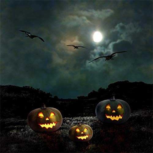 YongFoto 1,5x1,5m Foto Hintergrund Halloween Grusel Mondnacht Kürbis -