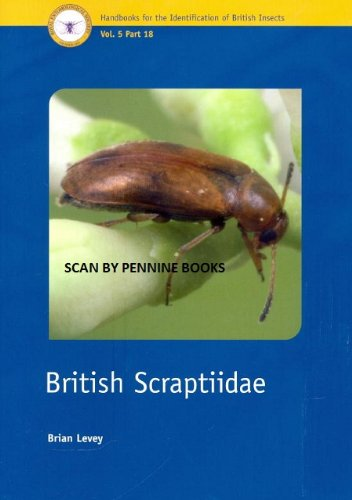 British Scraptiidae (Handbooks for the Identification of British Insects)