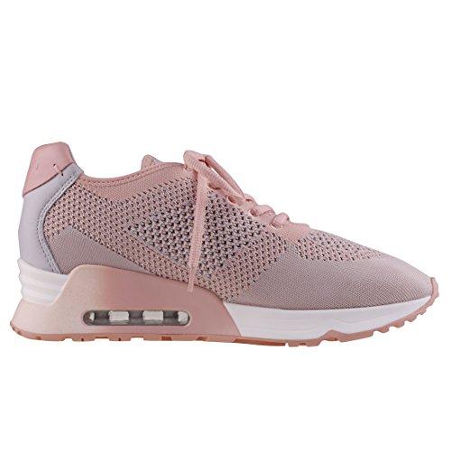Ash Footwear Scarpe Lucky Knit Sneaker Pearl e Nude Donna Nude/Pearl