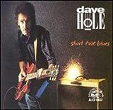 Songtexte von Dave Hole - Short Fuse Blues