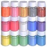 Pigmentos para Resina Epoxi,DEWEL 10g*15 Colores Pigmentos en Polvo,Mica en Polvos Para Hacer Slime,Jabon,Pintauñas,Sombra de Ojos,etc