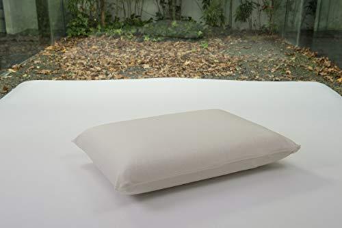 Bsensible - Funda de Almohada Protectora de Tencel, Impermeable y Transpirable Crudo 105 x 40