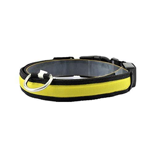 Cosanter 1 Stück LED-Licht Hundehalsband Große und Kleine Hunde Haustier Kragen Gelb Größe M -