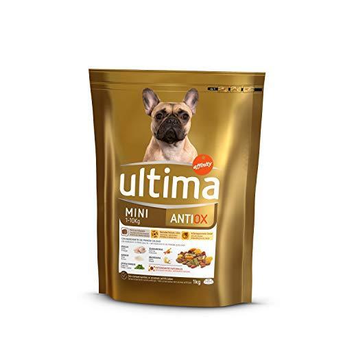 Ultima Pienso para Perros Mini Antiox - 1000 gr