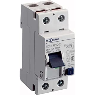 ABL Sursum Earth Leakage Circuit Breaker RP2203 2P 25 A 0,03 A Residual Current Switch 4011721100760