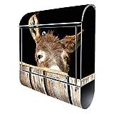Banjado Design Briefkasten mit Motiv Esel | Stahl pulverbeschichtet mit Zeitungsrolle | Größe 38x47x14cm, 2 Schlüssel, A4 Einwurf, inkl. Montagematerial