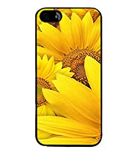 Fuson Designer Back Case Cover for Apple iPhone 5 (beautiful natural beauty suryfool)