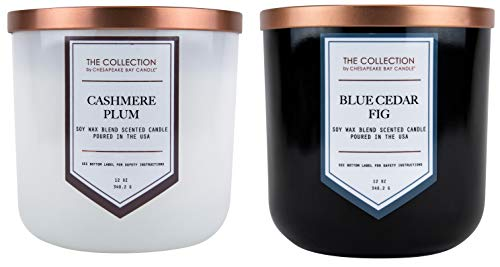 2 Pack Wick (Chesapeake Bay Candle Core Collection Duftkerze mit Zwei Dochten, Cashmere Pl Two-Wick Scented Candle (2-Pack) Cashmere Plum + Blue Cedar Fig)