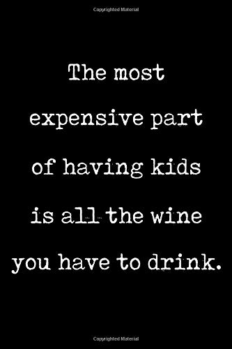 The most expensive part of having kids is all the wine you have to drink: Irreverent baby shower journal: Blank lined notebook and keepsake for parents