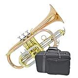 Trompetas Instrumentos de Viento Metal Trumpet BB Performance Cornet Fósforo Cobre Color a Juego Accesorios Super Sonido (Color : Gold)