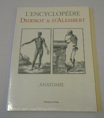 Anatomie par Diderot