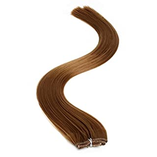 Synthetic Hair Extensions | Clip in Hair Extensions | 18 Inch | Light Brown (6) by American Pride