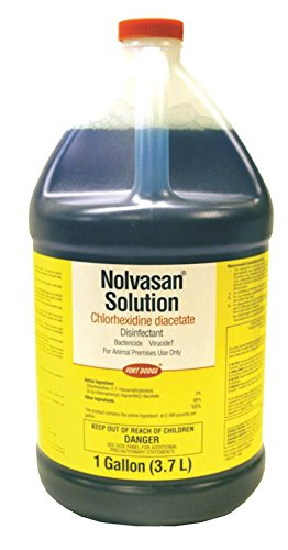 pfizer-equine-061598-nolvasan-disinfectant-1-gallon-by-pfizer-equine-products