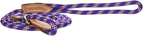Artikelbild: Hamilton 5/40,6cm X 6'London Schnell führen und Choke Halsband für Hunde