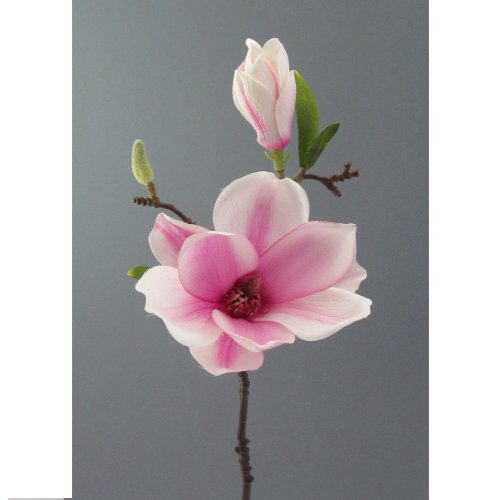 Kunstblume Magnolie 37 cm. Mit Magnolienblüte und Knospe. In WEISS-LILA -42