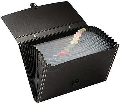 Escargot et Hawk 13-pockets Poly Expanding Chemise-dossier avec Portable-handle, format