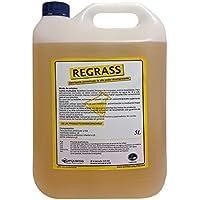 Desengrasante concentrado enérgico biodegradable. Envase de 5 litros.