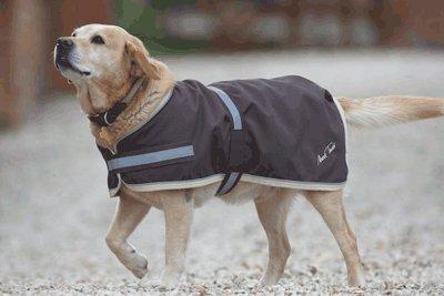 mark-todd-dog-rug-chocolate-40cm