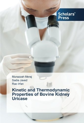 Kinetic and Thermodynamic Properties of Bovine Kidney Uricase
