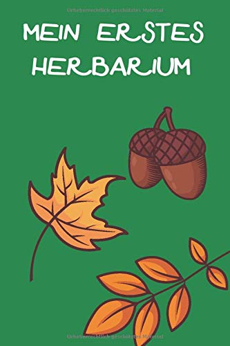 Mein Erstes Herbarium: Herbarium anlegen auf 118 Seiten