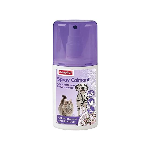 Beaphar - Spray calmant pour chat - 125 ml