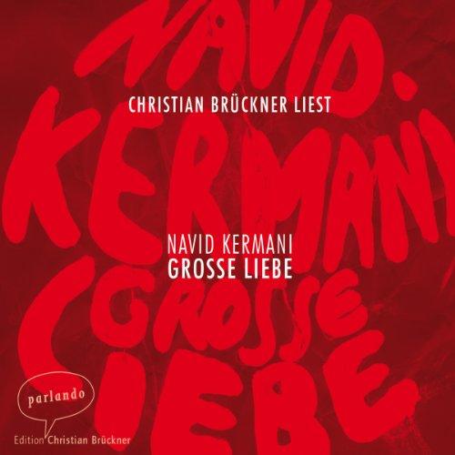 Buchseite und Rezensionen zu 'Große Liebe' von Navid Kermani