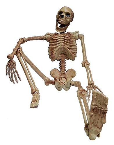 Cultica(R) Deko Figur Horror Skelett rundum plastisch komplett 1,1 Meter groß Grusel Gerippe Halloween Hänge Schocker (Witze Happy Halloween)