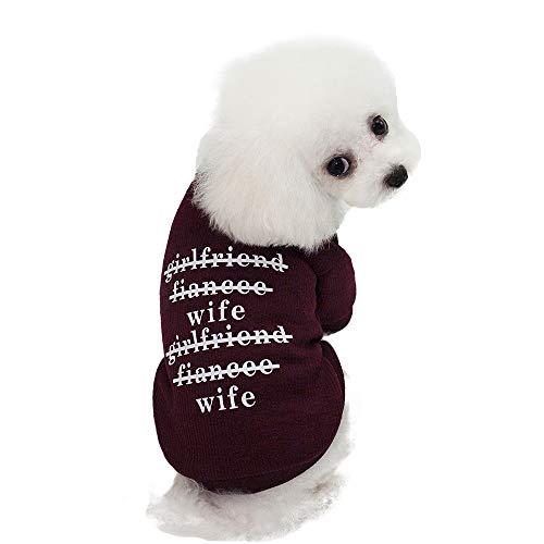 Batman's Freundin Kostüm - Haustier-Kleidung Haustier-Versorgungsmaterial-Verbindungs-Overall-niedliches hübsches Mode-T-Shirt Haustier-Hundekatze kleidet Frühlings-Innenmaschen-Gegenstand-Hemd, das zusammenpasst