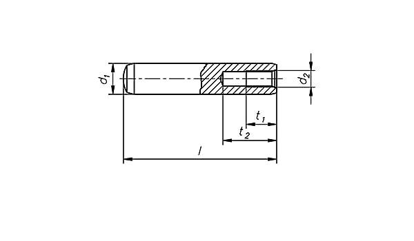 Zylinderstifte mit Innengewinde DIN 7979 Stahl blank Form D 10 m6 x 100-50 St/ück