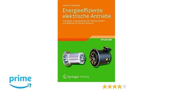 Energieeffiziente elektrische Antriebe: Grundlagen ...
