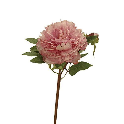 Home-Artelore 0113077 Pivoine Rose